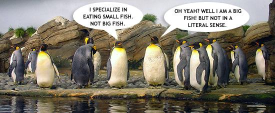 penguins_talking.jpg